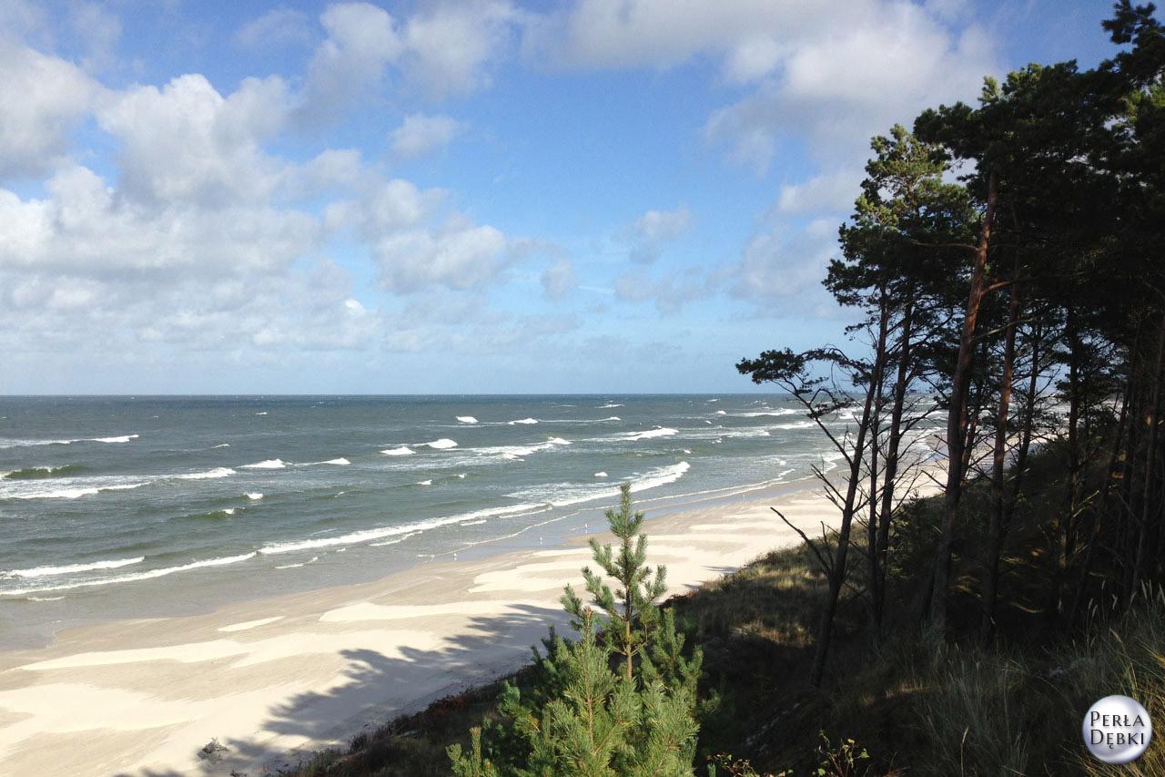 Plaża Dębki 13