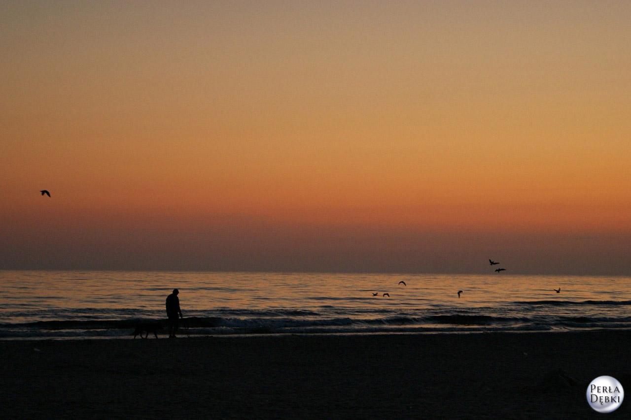 Plaża Dębki 14