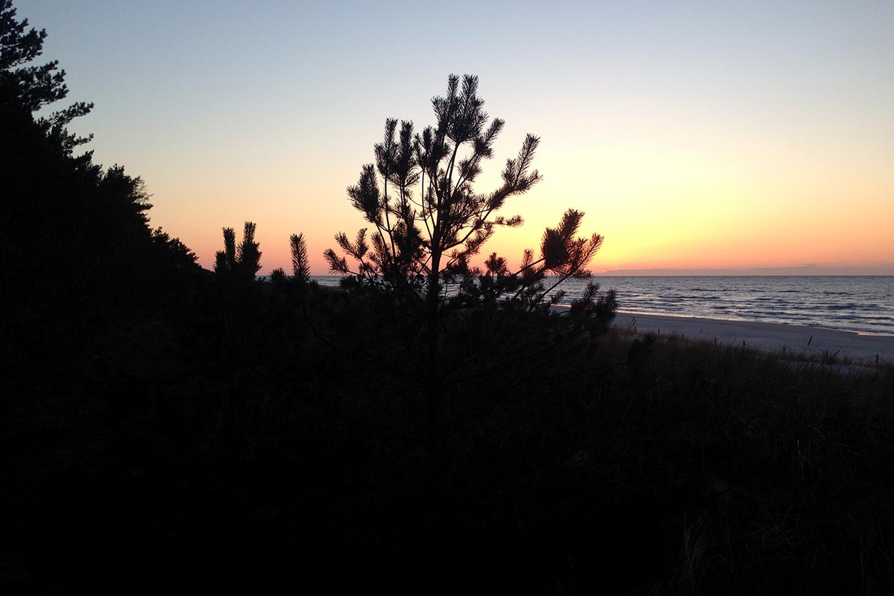 Plaża Dębki 16