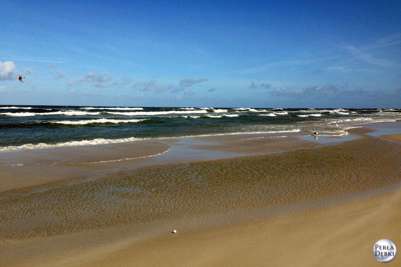 Plaża Dębki 7